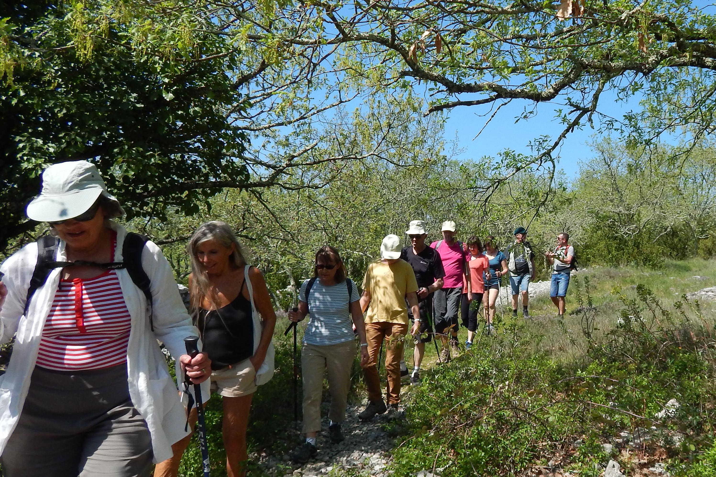 Balades Nature et paysages à Balazuc